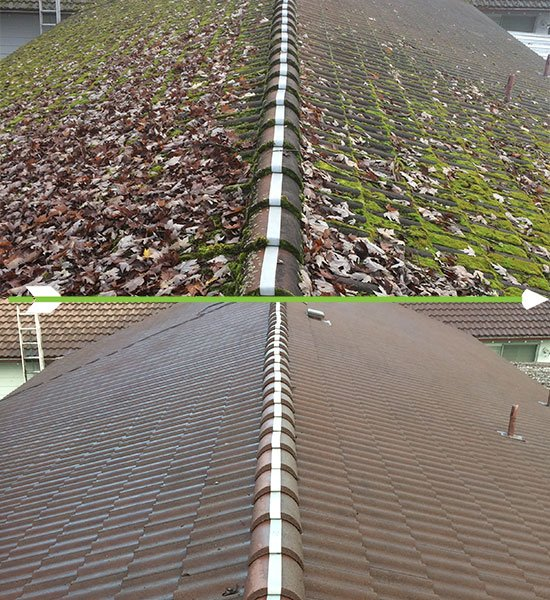 Roof Moss Removal Arrowhead Roof Cleaning Amp Exteriors