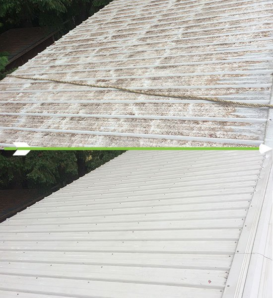 Metal Roof Cleaning