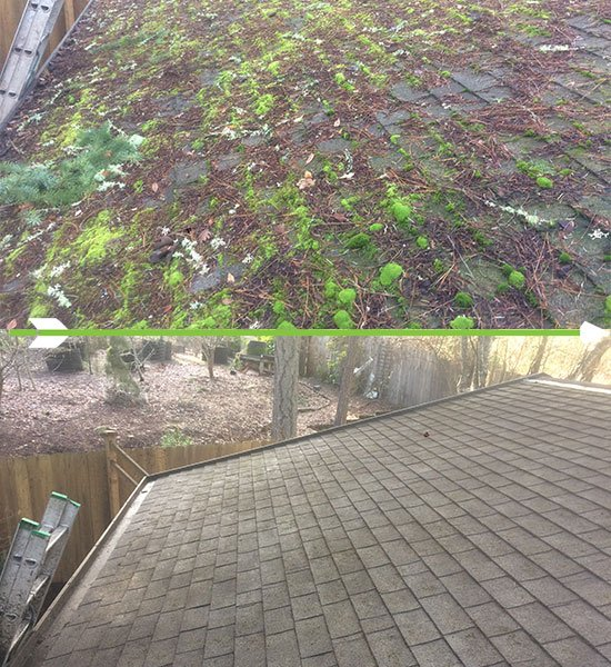 Composite Roof Cleaning